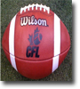 2013 CFL Season Betting Futures and Preview